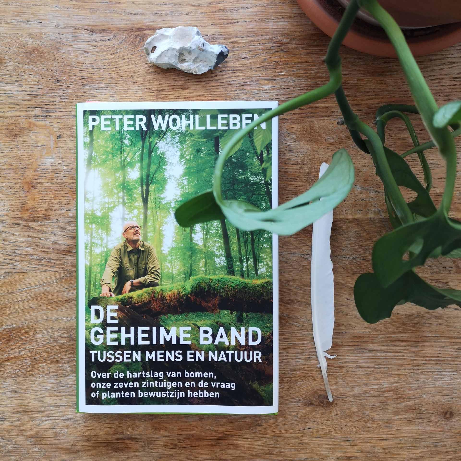 Recensie De geheime band tussen mens en natuur van Peter Wohlleben